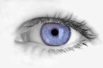 Auge offen