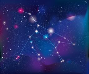 The constellation of Ursa Major