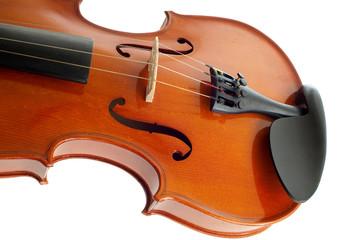 violino su fondo bianco