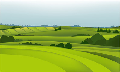 Foto op Canvas Lime groen Green field