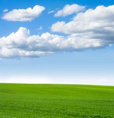 Landscape grass sky