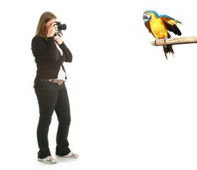 fotografa e pappagallo