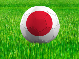 WM Football Japan