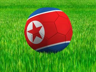 WM Football Nordkorea