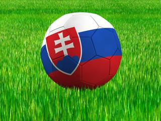 WM Football Slowakei
