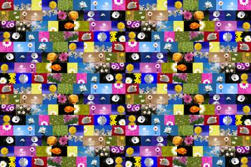 fondo flores diferentes