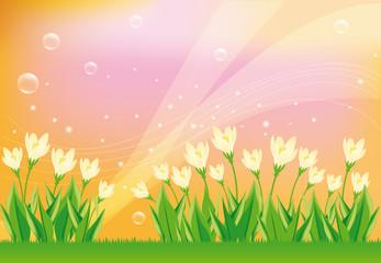 Spring card en vector