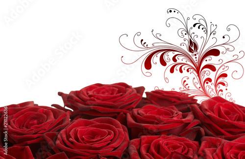 rote rosen mit ornament stockfotos und lizenzfreie bilder auf bild 21022636. Black Bedroom Furniture Sets. Home Design Ideas