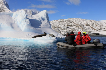 Poster de jardin Antarctique People in Dinghy are very close to very dangerous leopard seals