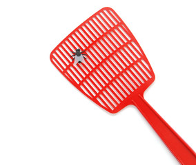 fly on a red flyswatter