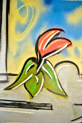 Graffiti : Tulipe rose