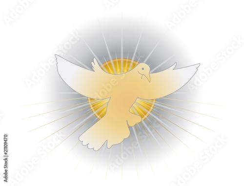 """Favorito Simbolo dello Spirito Santo (colomba)"""" Immagini e vettoriali  HT85"""