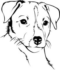 Hunde Ausmalbilder Jack Russel ~ Die Beste Idee Zum Ausmalen von
