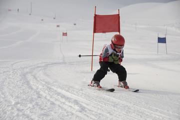 Ski Racer-2