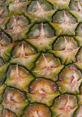 a closeup of a husk of a pineapple