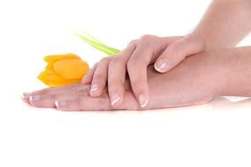 mains et tulipe jaune
