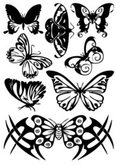 vector illustration tattoo detailed vintage butterflies