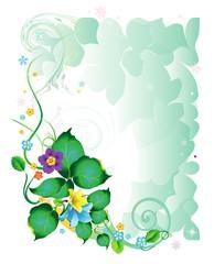 Bindweed flower bouquet