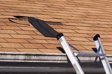 Damaged Roof Shingles Repair