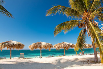 Printed roller blinds Caribbean Caribbean Island Paradise