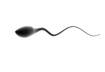 Single sperm