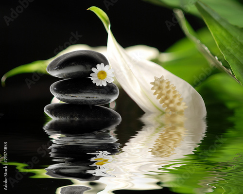 steine mit spathiphyllum spiegeln sich im wasser stockfotos und lizenzfreie bilder auf fotolia. Black Bedroom Furniture Sets. Home Design Ideas