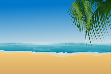 beach palmtree scenery