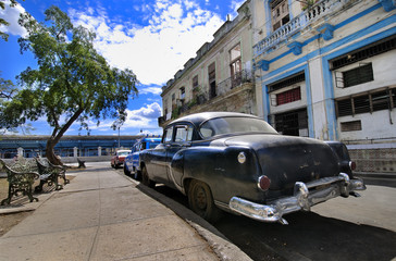 Garden Poster Cars from Cuba Havana Street with Oldtimer