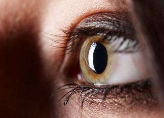 linkes Auge im Detail