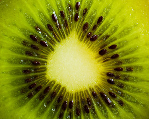 Macro picture of a kiwi fruit