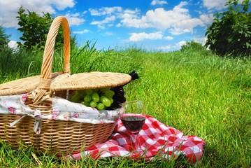 Aluminium Prints Picnic picnic setting with wine