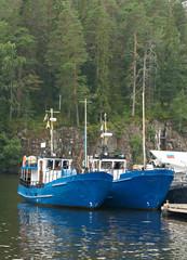 Fishing vessels at a mooring
