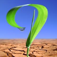 Ecologie..Rechauffement.Solution?