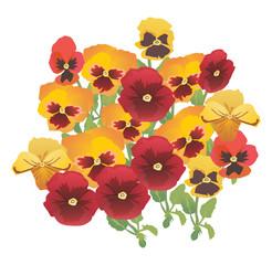 orange spring flowers illustration