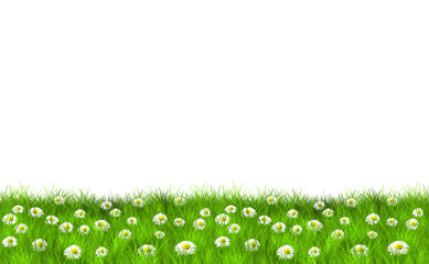 Grass and Daisies Motive