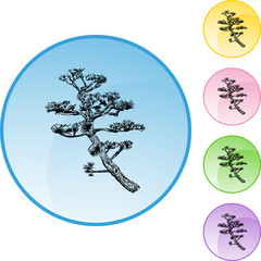 201003300932-bonsai-tree