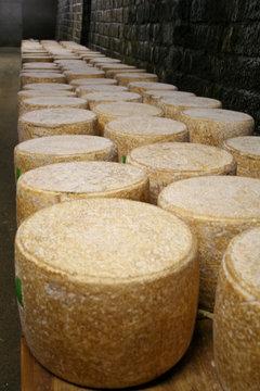 Cave d'affinage de fromage Cantal