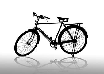 """""""male"""" old bike"""