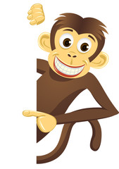 Cute monkey and blank space