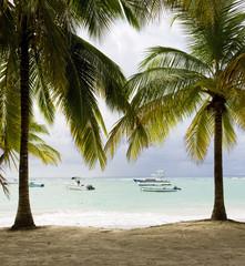 Sandy Beach, Barbados, Caribbean