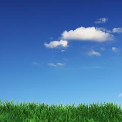 Grüne Wiese und blaue Wolken