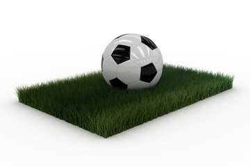 Soccerball on a piece of lawn