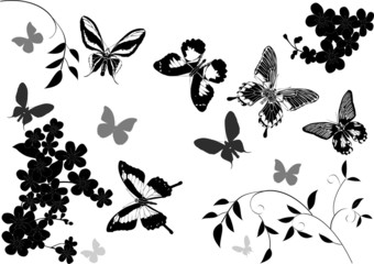 grey and black butterflies above flowers