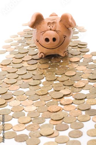 Piggy bank canadian money