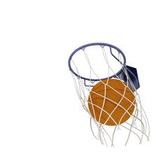 Two basketball items