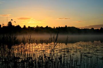 Sunrise over a marsh