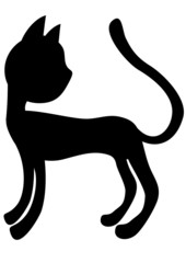 Silhouette of kitten