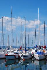 Capodimonte  - Viterbo - Il porto - Barche a vela