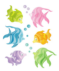 Set of color fishes on white background