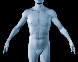 human 3d con malla